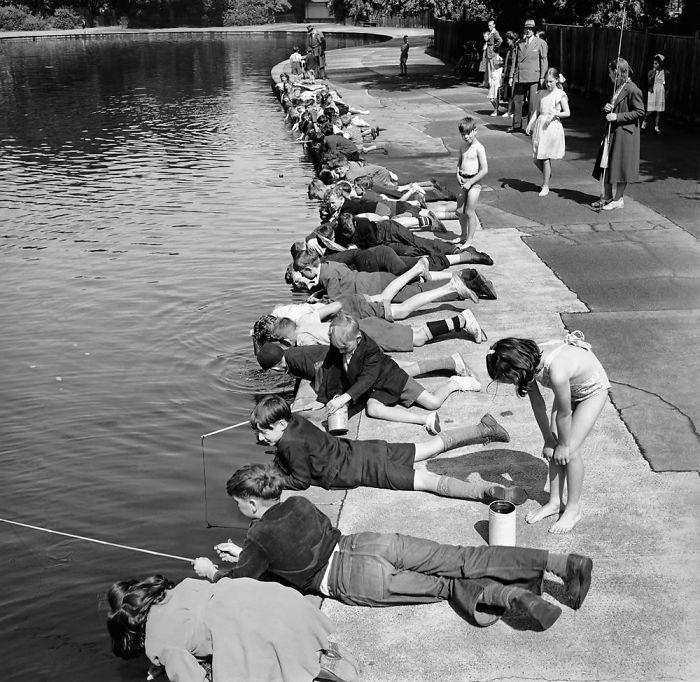 Children Fishing In Victoria Park, London, 1953