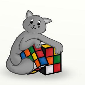 The Cube Cat