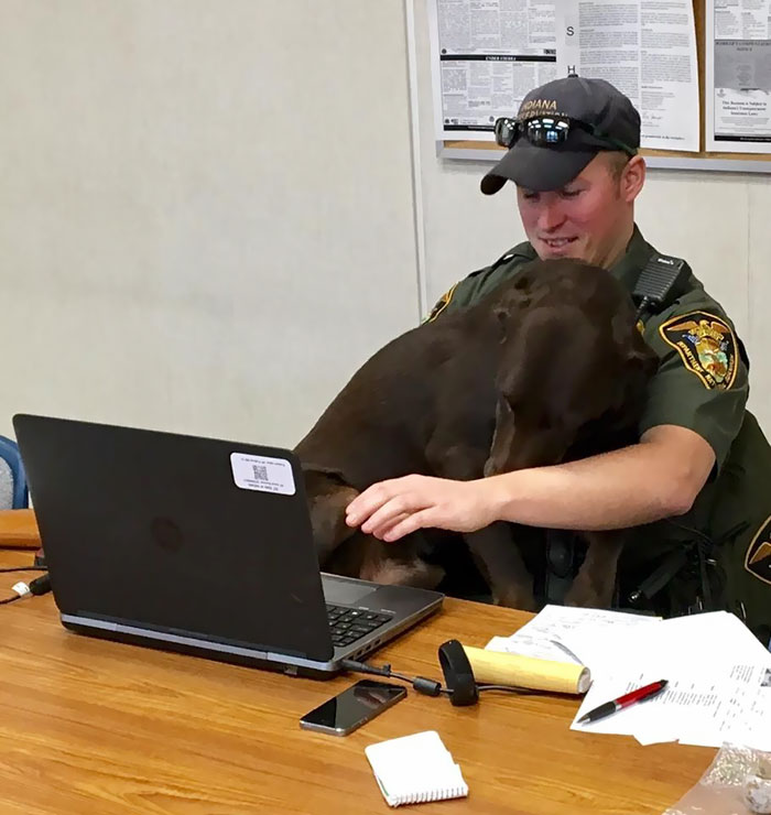 http://static.boredpanda.com/blog/wp-content/uploads/2017/02/k-9-officer-dog-kissing-photo-kenobi-1.jpg