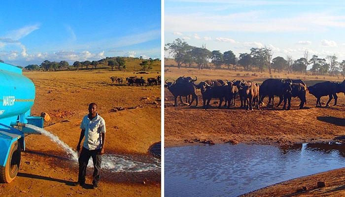Este hombre conduce durante horas cada día de sequía para llevar agua a los animales salvajes sedientos