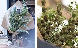 Marijuana Bouquet Delivery Service