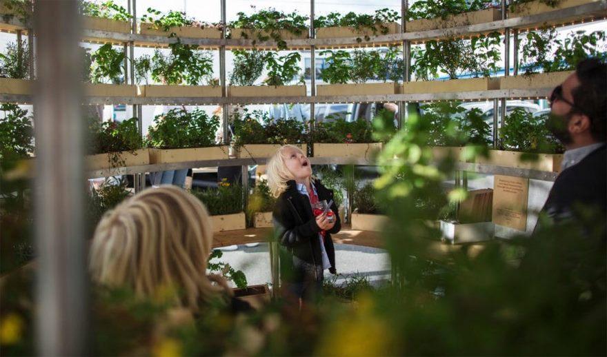 open-source-plans-garden-ikea-growroom-3