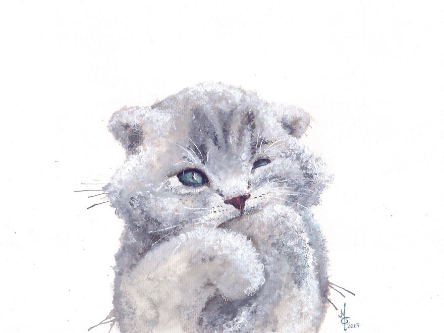 Watercolor Animals By Illustrations Of Dreams