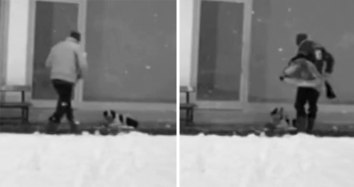 Security Cams Just Caught A Man Doing The Sweetest Thing For A Freezing Homeless Dog