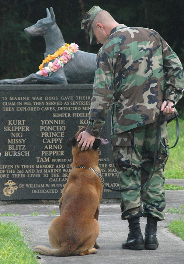 U.S. NAVY Petty Officer Blake Soller And His Military Working Dog Rico Pay Tribute To The National War Dog Cemetery