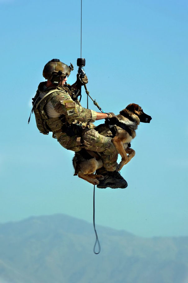 U.S. Air Force Airman 1st Class Jason Fischman Hoists With A U.S. Army Tactical Explosive Detection Dog
