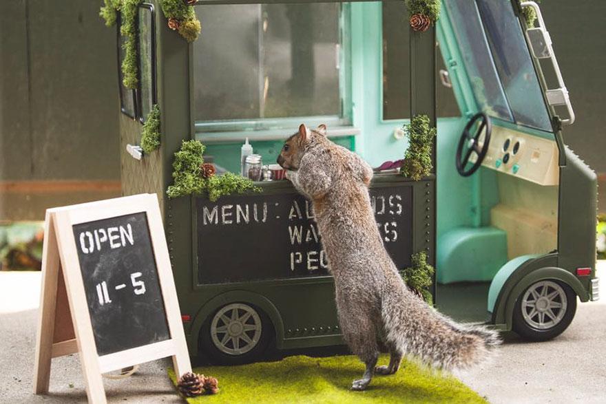 squirrel-parties-ashly-deskins-photography-22