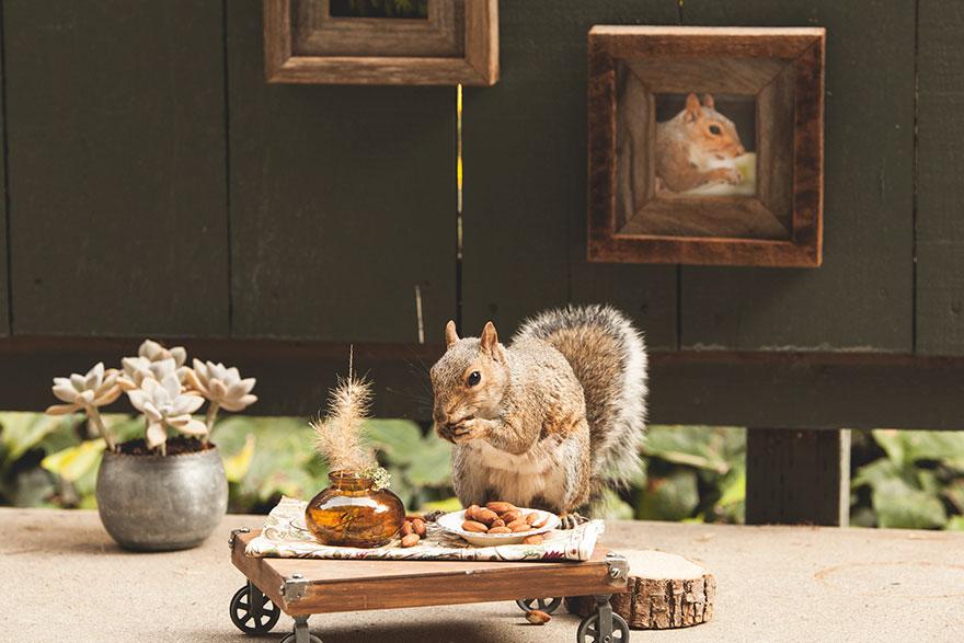 squirrel-parties-ashly-deskins-photography-26