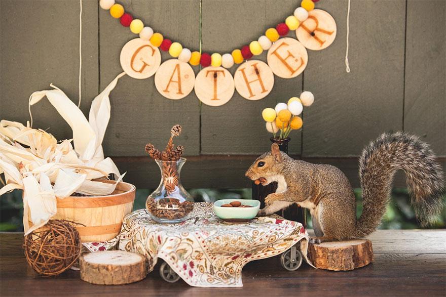squirrel-parties-ashly-deskins-photography-28