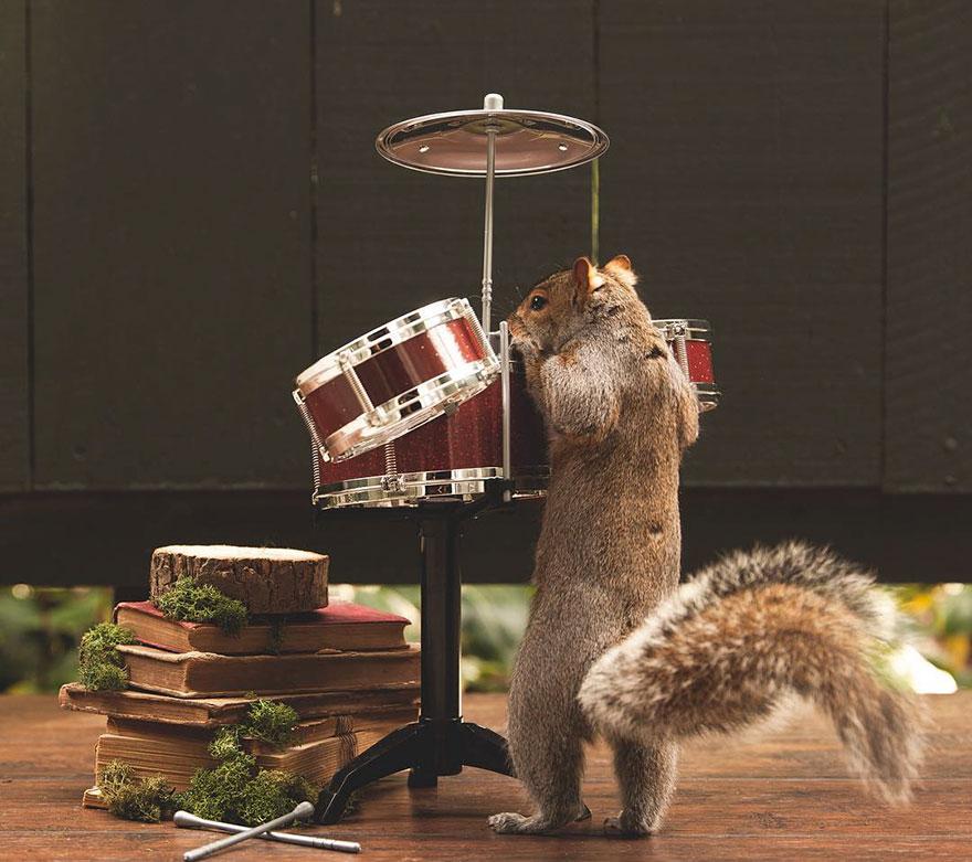 squirrel-parties-ashly-deskins-photography-6