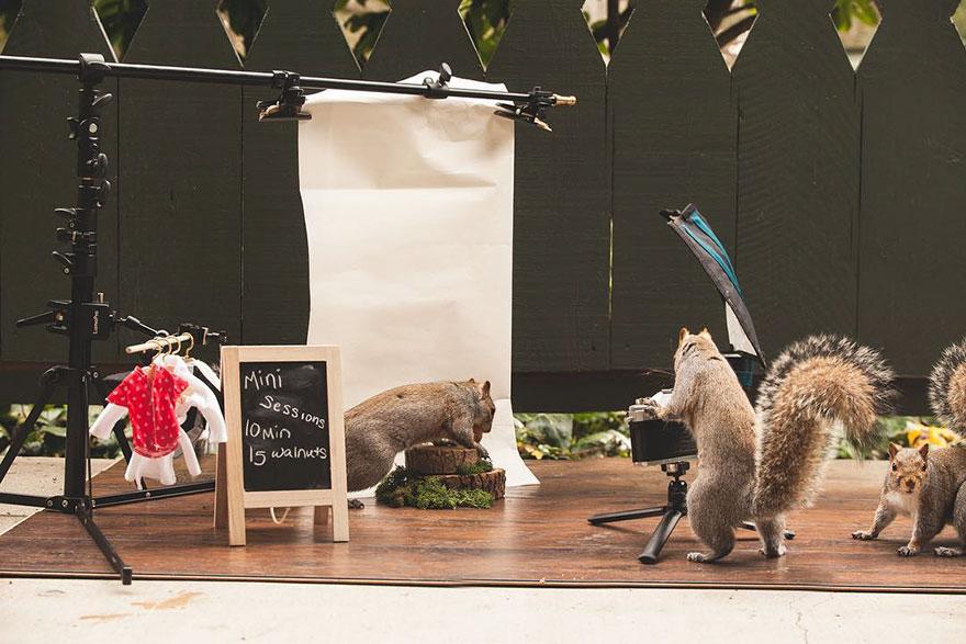 squirrel-parties-ashly-deskins-photography-9