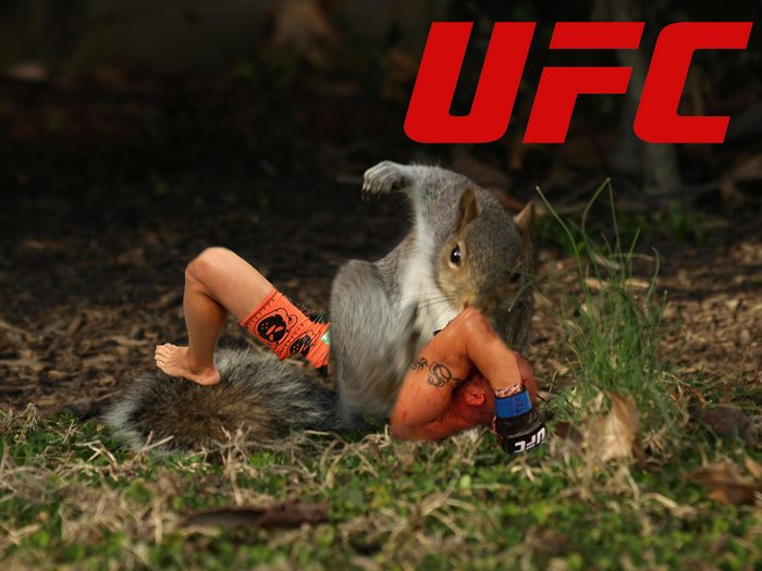 Georges Squirrel Pierre In His Ufc Debut