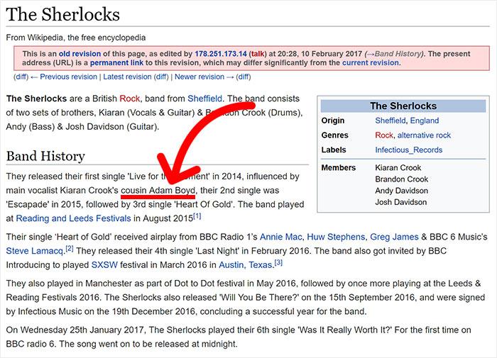 teen-sneaks-vip-band-concert-wikipedia-23