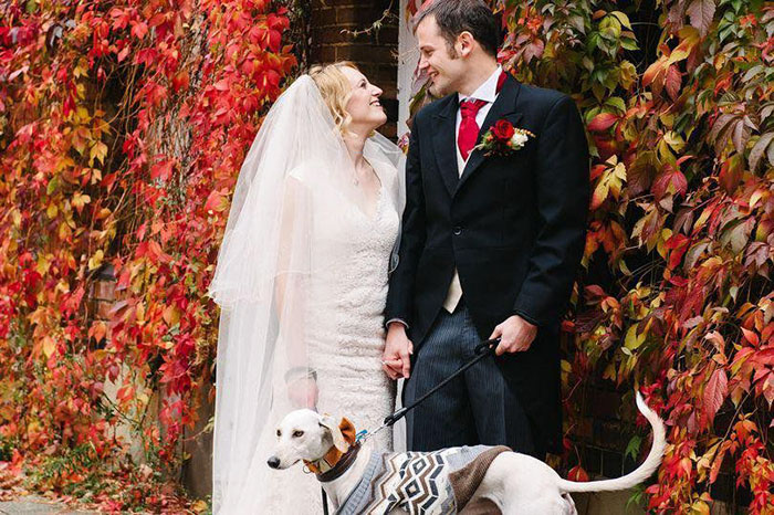 thinniest-rescue-dog-walks-owner-aisle-william-5