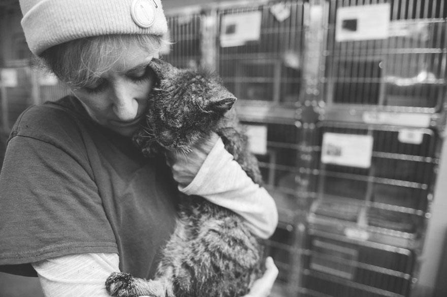 untouchable-cat-sarcoptic-mange-hugged-valentino-6