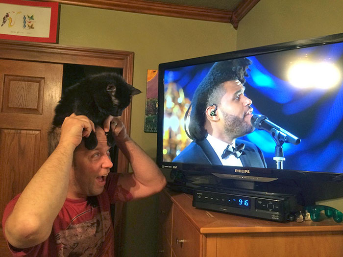 The Weeknd Guy Or This Cat-Man?