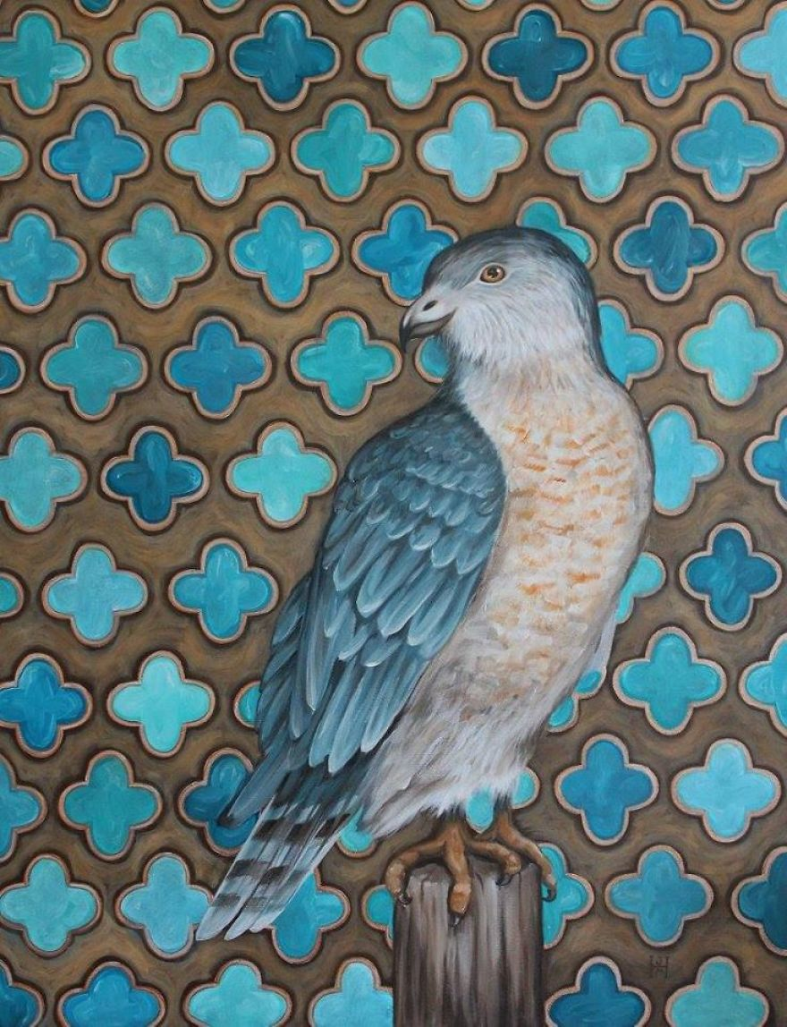 A Coy Cooper's Hawk- Original Acrylic Paint On Canvas