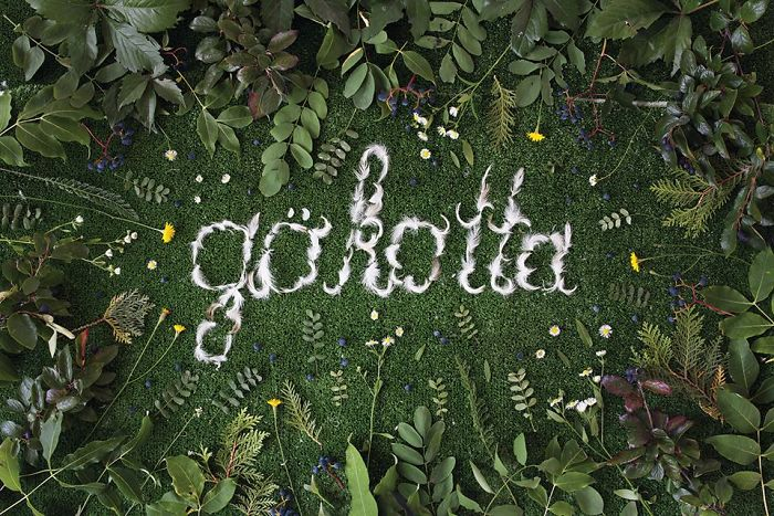 Gökotta (swedish): To Wake Up Early In The Morning With The Purpose Of Going Outside To Hear The First Birds Sing