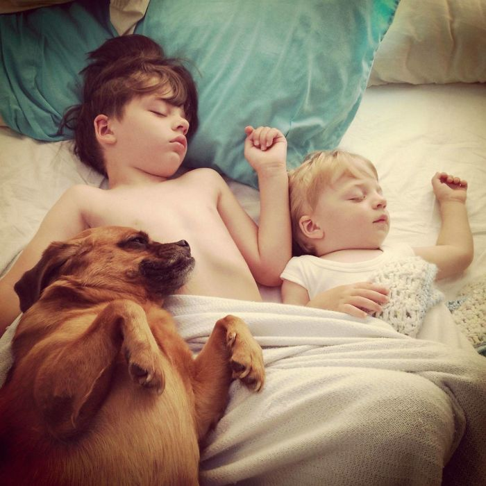 """Sleeping Buddies"" The Best Photo I've Ever Taken Of My Boys"
