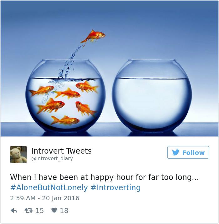 Introvert Tweet