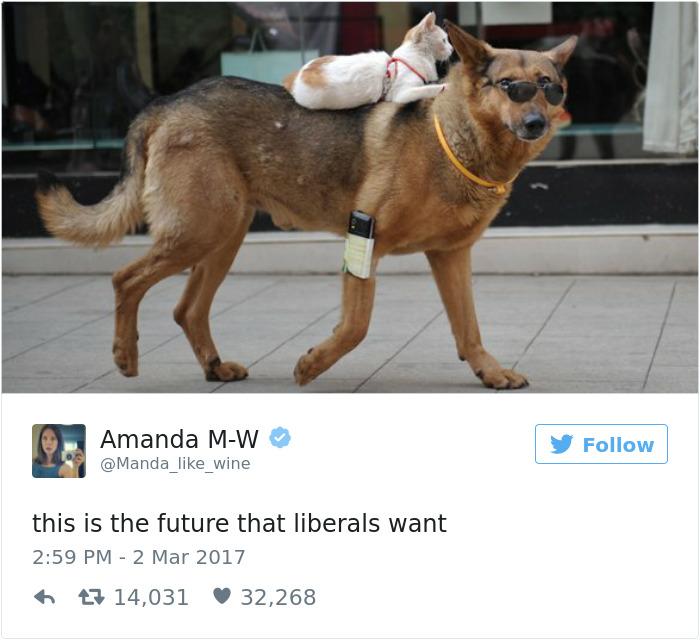 Liberal Future Meme