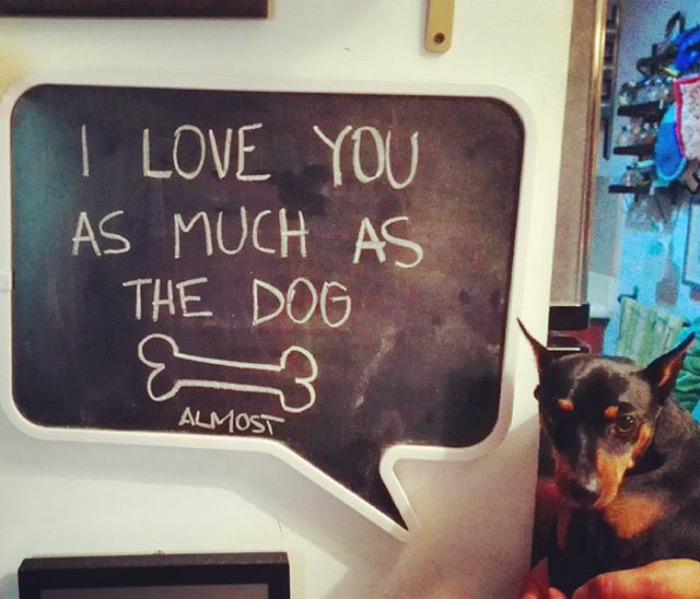 Love You As Much As The Dog
