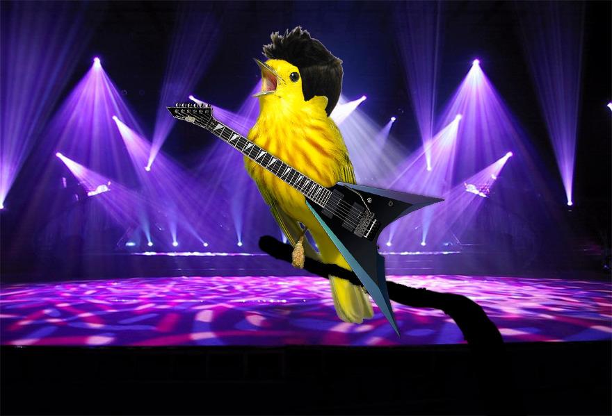 #9 Rockin' The Stage