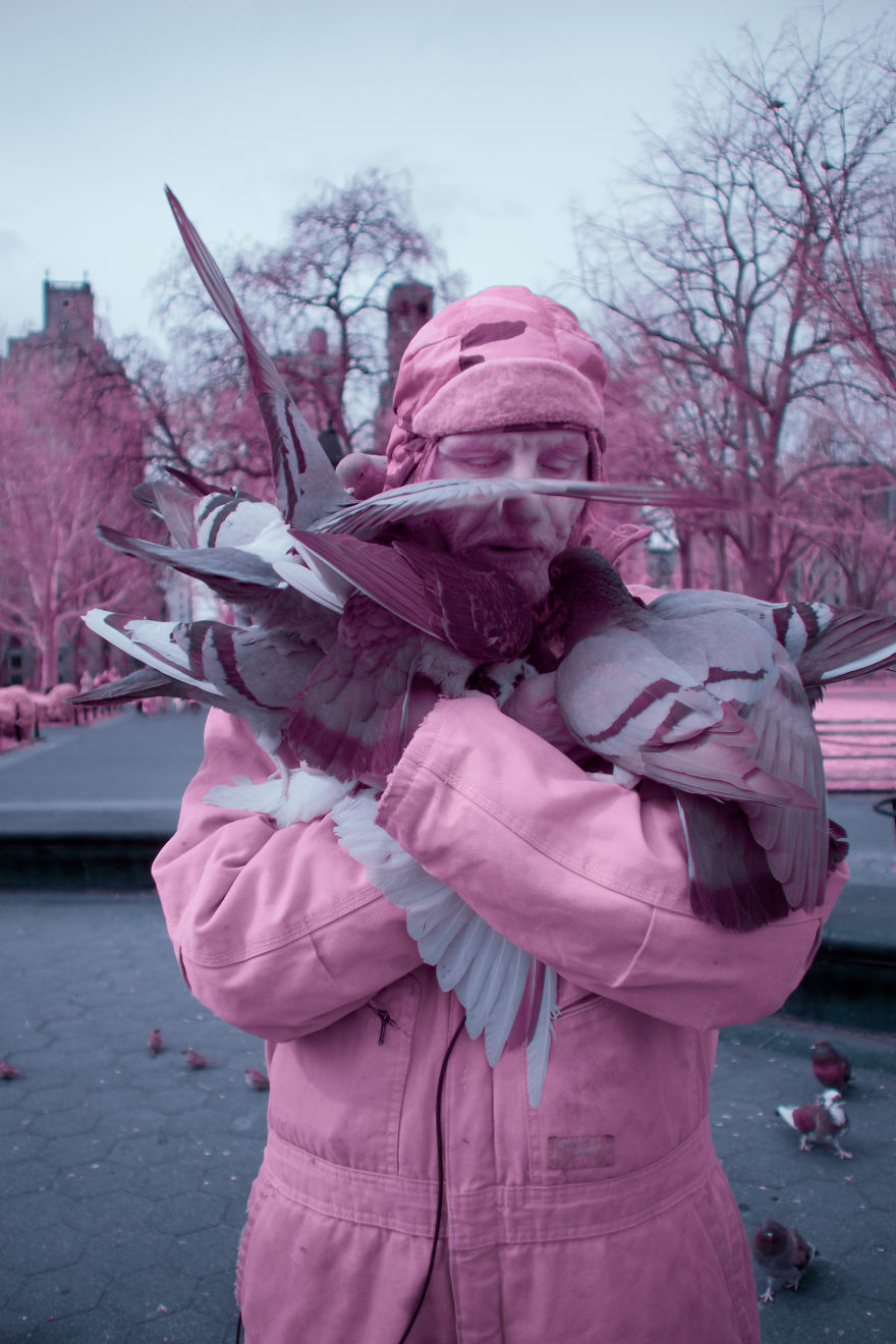 A Recent Infrared Photo Series. Nyc X Ir