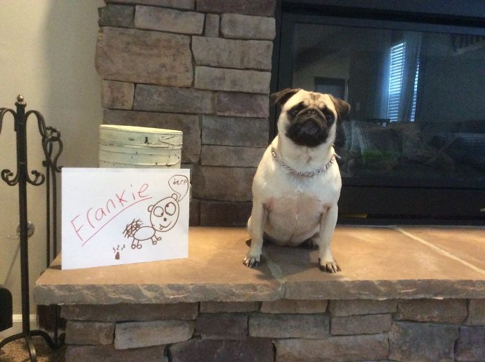 Frankie!