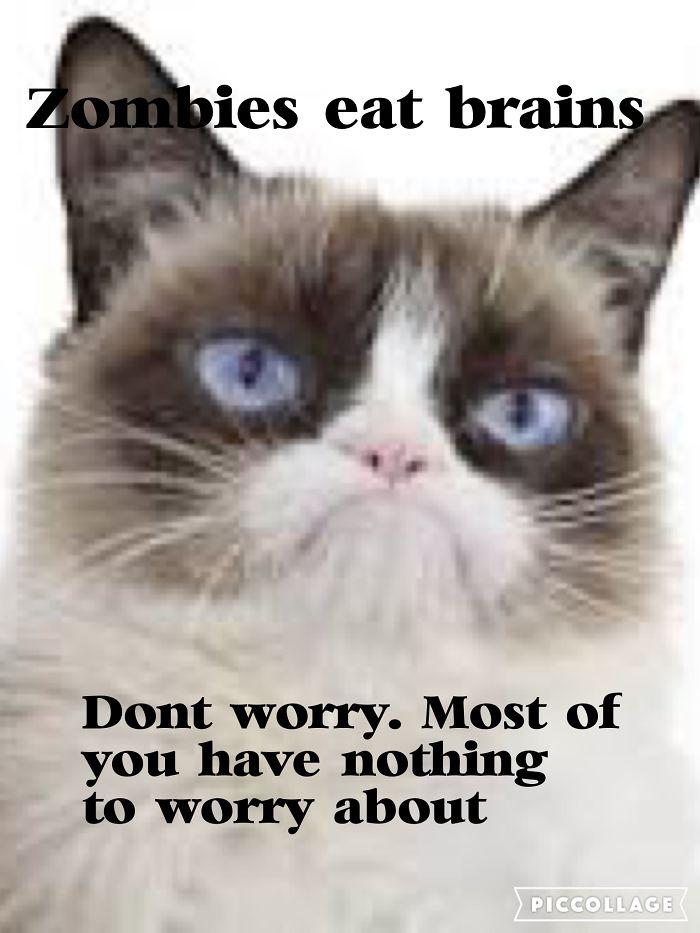 Grumpy Cat For Life