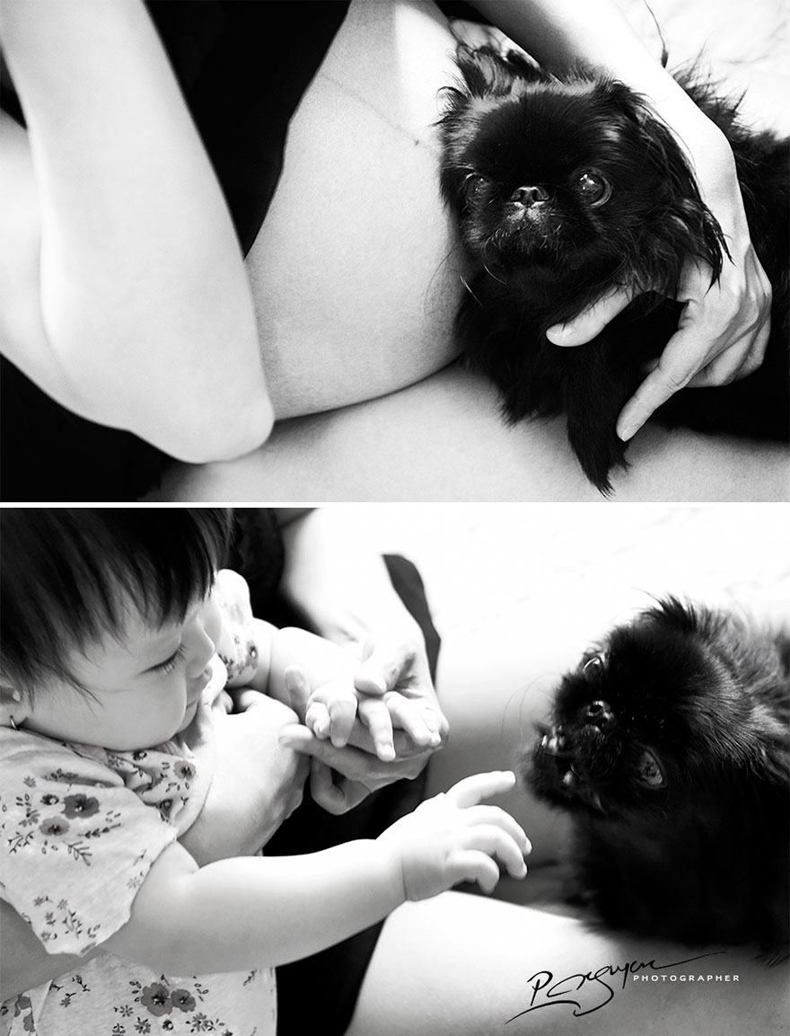 While Pregnant, My Wife Let The Pets And Baby Interact With Each Other, In Order To Teach Her About The Love