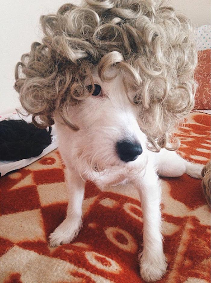 Zoja's New Hair