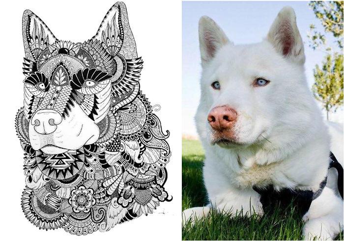 I Draw Zentangle Style Pet Portraits