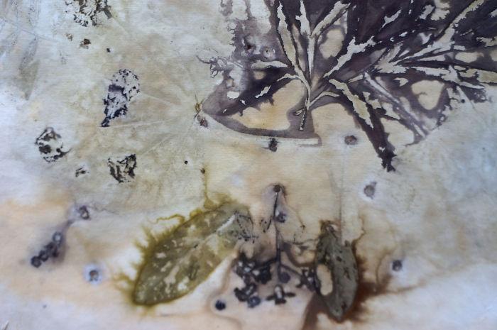 Unique Technique – Contact Painting With Plants