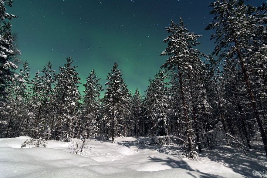 Moonlight Auroras