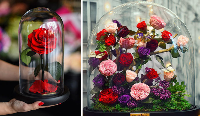 "Real ""Beauty And The Beast"" Roses Exist, And They'll Last For 3 Years"