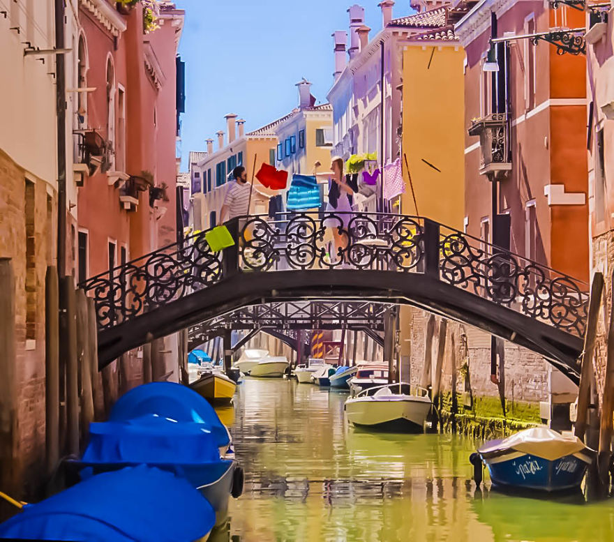 Live Furniture Venice