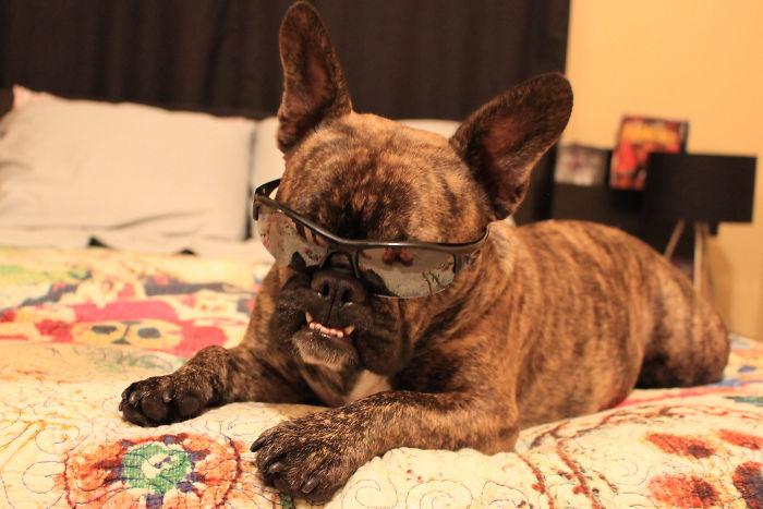 Sunglasses Inside? Really Mom?