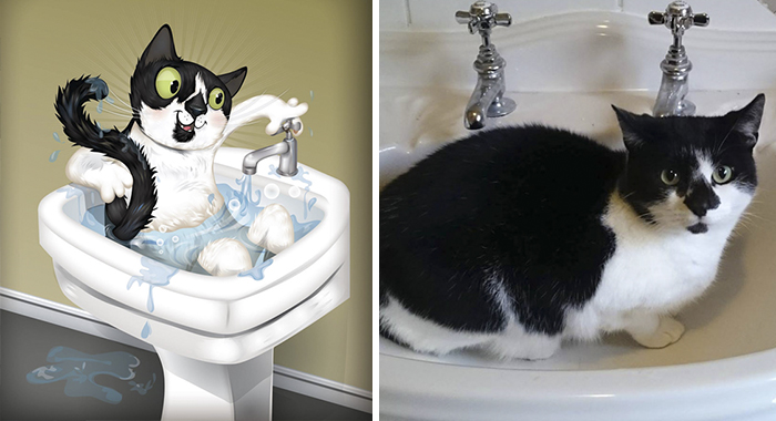 Lambo Is Always In The Sink