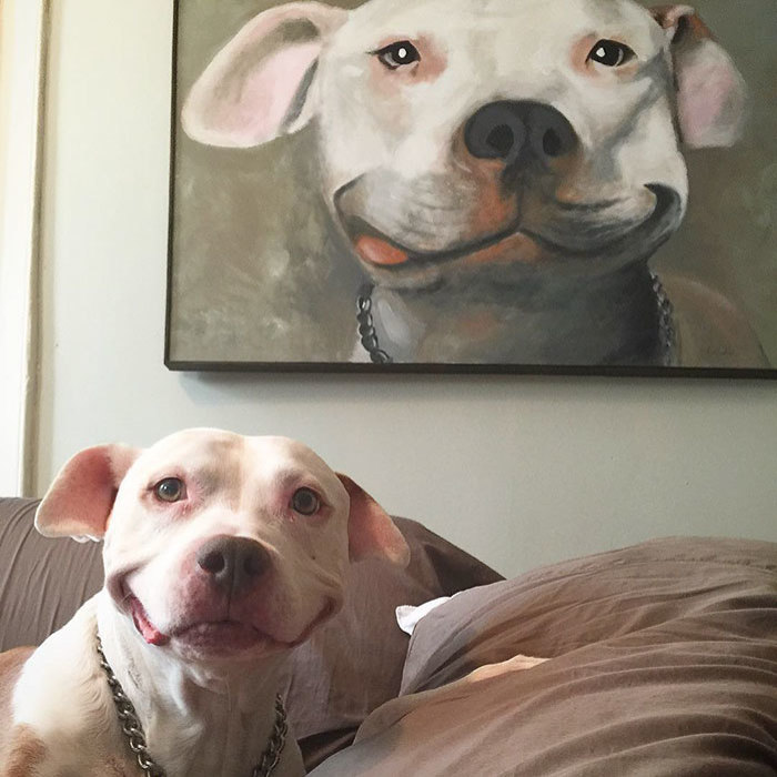 Challenge: Draw A Picture Of Your Pet And Post It Here With A Photo