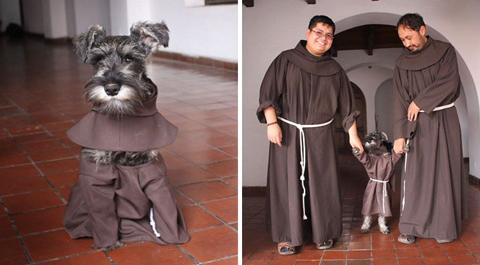 This Monastery Adopted A Stray Dog, Now He Enjoys His Life As A Monk