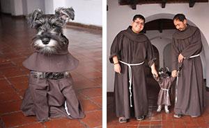 Este monasterio ha adoptado a un perro callejero, y ahora disfruta su vida como monje