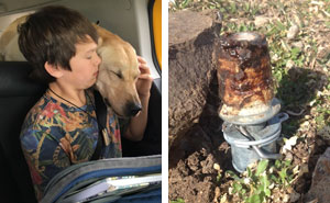 A Tool Planted By The US Government Just Killed This Family's Dog – And It Could Have Killed Their Son