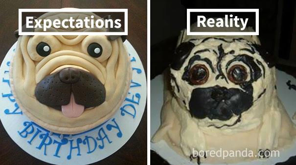 Pug Cake Fail