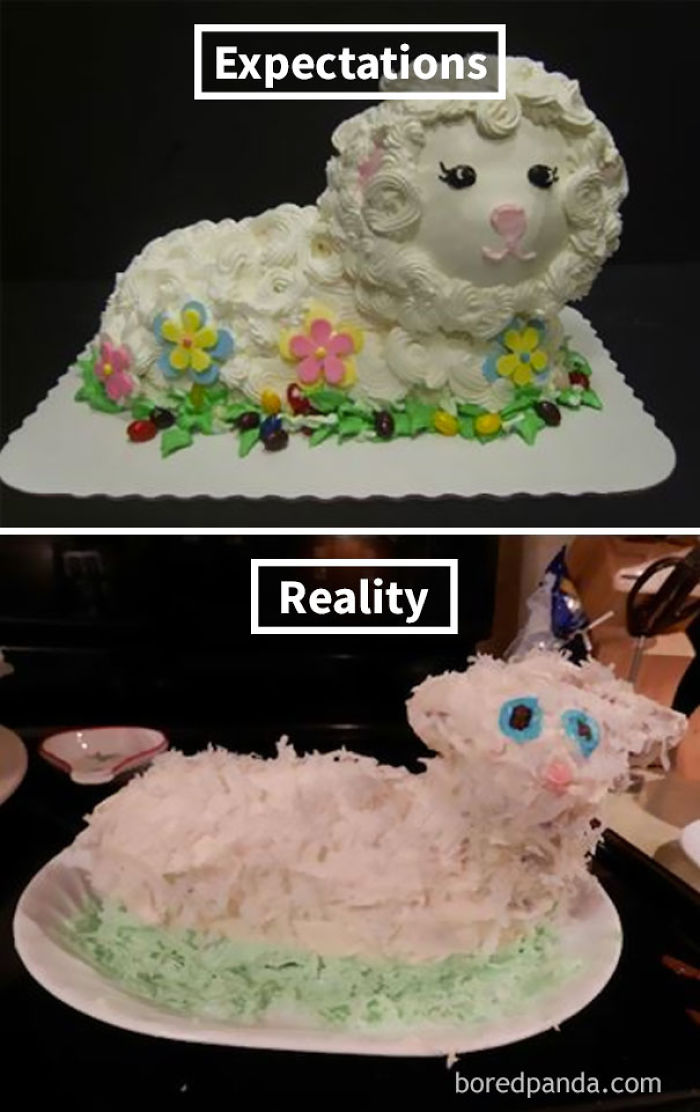 Funny Cake Decorating Fails : Expectations Vs Reality: 10+ Of The Worst Cake Fails Ever ...