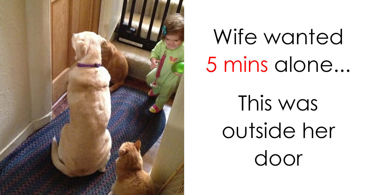 202 Parenting Memes That Will Make You Laugh So Hard It Will Wake Up