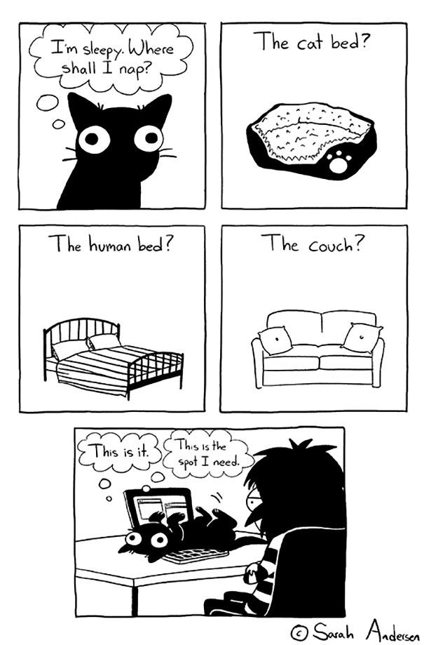 Sarah's Scribbles Comics