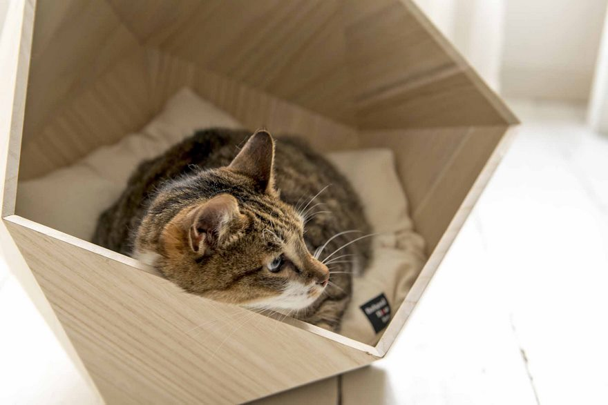 geometric-pet-beds-natural-slow-4