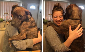 Este perro rescatado hace 1 año abraza cada día a su dueña cuando vuelve a casa