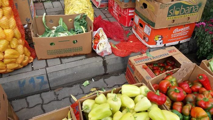 How We Started The Fight Against Food Waste In Aiud, Romania